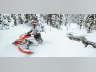 2021 Ski-Doo BACKCOUNTRY X 850 E-TEC ES ICE COBRA 1.6, snowmobile listing