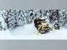 2021 Ski-Doo RENEGADE X-RS 850 E-TEC ES ICE RIPPER XT 1.25, snowmobile listing